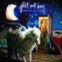 Infinity On High Fall Out Boy  2LP