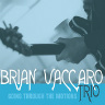 Going Through the Motions Vaccaro,Brian Trio  St. Louis jazz guitarist plays originals and standards.