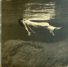 Undercurrent Evans Bill/Jim Hall  JAZZ LP  S  VG++/VG+  GATEFOLD/SEAM WEAR/TAPE ON SEAM/SURFACE MARKS/SOME SURFACE NOISE/GREY LABEL